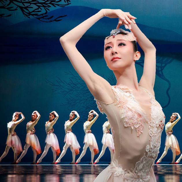 舞劇Dance Drama「朱鷺」 ※公演中止|公演案内|一般財団法人 民主音楽協会